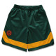 classic line shorts Arch green 1
