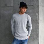 model_waffleT_Hgra1_taiga_640